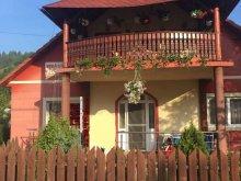 Accommodation Barațcoș, Mediterrán Guesthouse