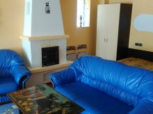 Accommodation Orlat, Sibiu 33 Villa