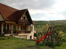 Accommodation Cluj county, Apartment Eva Rustic