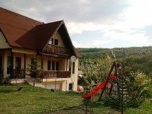 Casă de oaspeți județul Cluj, Casa Eva Rusztik