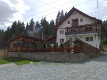 Accommodation Alba county, Bianca Chalet