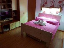Accommodation Cornești, Farcaș House