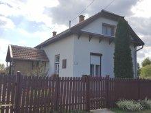 Cazare Tiszasüly, Casa de oaspeți Borostyános