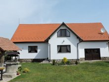 Accommodation Dalnic, Orsi Guesthouse