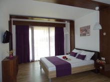 Accommodation Râmnicu de Jos, Dream Resort Villa