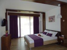 Vilă Rariștea, Vila Dream Resort