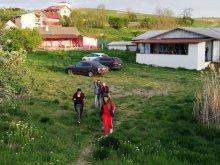 Casă de vacanță Partizani, Casa de vacanță Bălteni