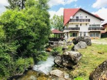 Pensiune Valea Prahovei, Casa de oaspeti Iulia