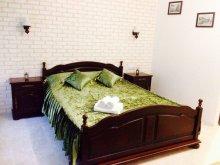 Accommodation Dolj county, Vladu Studio Apartment 1