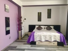 Accommodation Romania, Vladu Studio Apartment 6