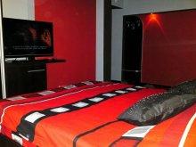 Accommodation Dolj county, Vladu Studio Apartment 8