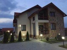 Accommodation Nădab, Rustica B&B
