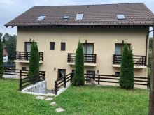 Accommodation Braşov county, Kate House