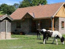 Accommodation Csányoszró, Szilvánusz Guesthouse