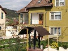 Casă de vacanță Mustești, Casa Luminița