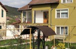 Nyaraló Várhely (Sarmizegetusa), Luminița Nyaraló