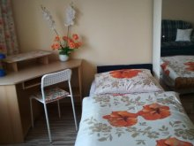 Accommodation Kiskorpád, Melinda Apartment