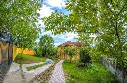Villa Hegyköztóttelek (Tăutelec), Liana Villa