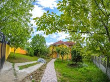 Villa Mustești, Liana Villa