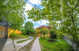 Villa Pusztaújlak (Uileacu de Criș), Liana Villa