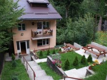 Accommodation Burduca, Aleea Villa