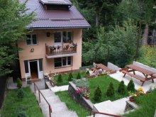 Villa Râu Alb de Sus, Aleea Villa