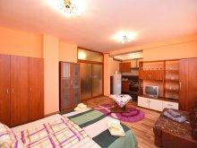 Apartament Săvârșin, Garsoniera Trident
