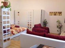Accommodation Kiskorpád, Város Szíve Apartment