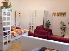 Accommodation Mezőcsokonya, Város Szíve Apartment