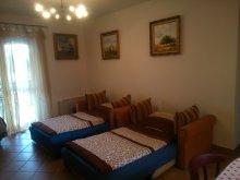 Accommodation Hungary, K&H SZÉP Kártya, Crazy Frog Gambrinus Apartment