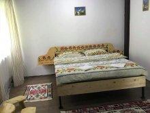 Accommodation Pleșești, Patrick Guesthouse