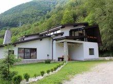 Accommodation Stoenești, Căsuța Didi Guesthouse