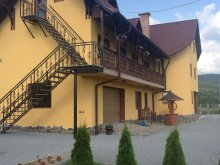 Accommodation Sâmbriaș, Bambi Guesthouse
