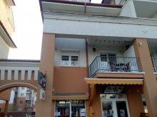 Apartament Hajdúnánás, Apartament Zöld Béka Gambrinus II