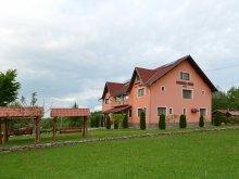 Accommodation Făgăraș, Denisa Guesthouse