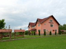 Accommodation Praid, Denisa Guesthouse