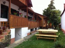 Accommodation Aiudul de Sus, Orsolya Guesthouse