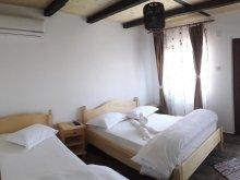 Accommodation Vișina, Casa din Deltă