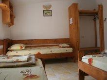Accommodation Saturn, Tichet de vacanță, Pinciuc Guesthouse
