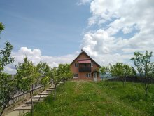 Accommodation Nicolești (Frumoasa), Bálint Guesthouse