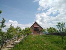 Cazare Nicolești (Frumoasa), Casa de oaspeți Bálint