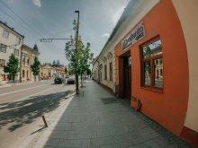 Cazare Transilvania, Apartament Casa Centrală