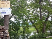 Cazare Valea Dobârlăului, Pensiunea Albinuța