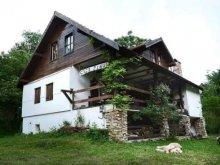 Casă de oaspeți Pleșcuța, Casa Pinul