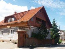 Cazare Păuleni, Casa de oaspeți Kálmi