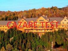 Pachet Piatra Secuiului, Hotel Travel (cazare test)