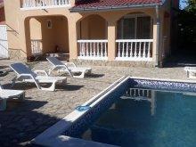 Vacation home Saraiu, Simona Villa