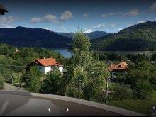 Casă de vacanță Bârgăuani, Complex Obreja