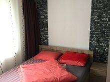 Accommodation Cluj-Napoca, Iulia Apartment