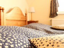 Bed & breakfast Monor, Boulevard City Guesthouse